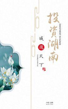 2020投资湖南 电子书制作软件