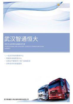武汉智通恒大供应链科技股份有限公司电子画册
