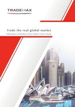 TradeMax Group Overview,在线数字出版平台