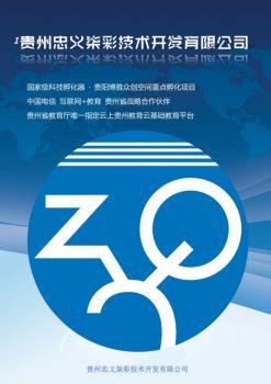 贵州忠义柒彩技术开发有限公司