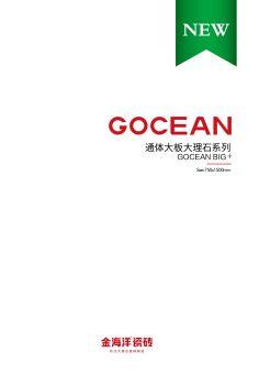 金海洋通体大板 750x1500mm宣传画册