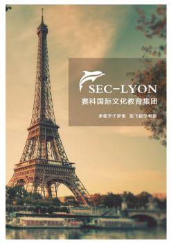 赛科里昂公司手册