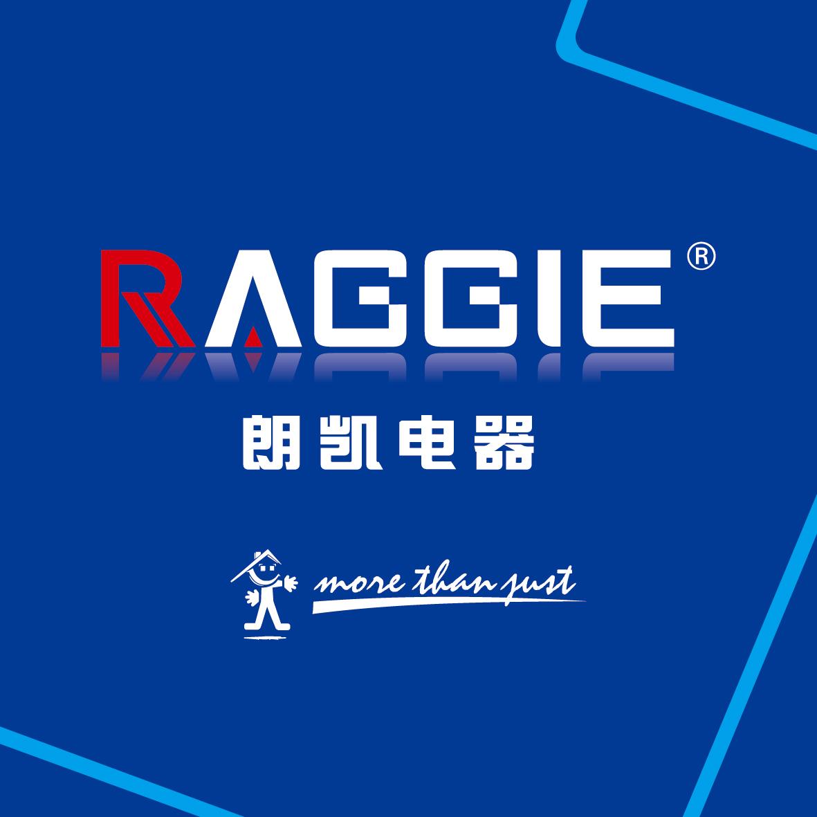 SHANGHAI RAGGIE POWER CO.,LTD 电子书制作软件