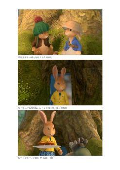 话说兔子本来就是这片土地上的居民宣传画册