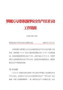 罗湖区人民医院夏季安全生产百日行动工作第一期简报(2)电子刊物