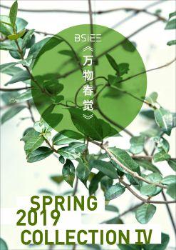 BSiEE2019春新品时尚大片COLLECTION 4,多媒体画册,刊物阅读发布