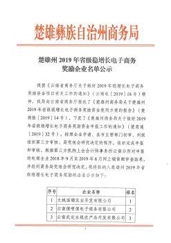 楚雄州2019年省级稳增长电子商务奖励企业名单公示电子刊物