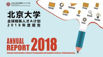 北京大学全球精英人才A计划2018年度报告电子书