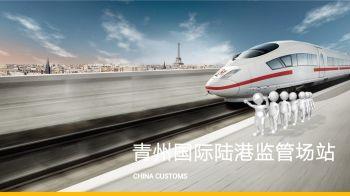 青州国际陆港(1)