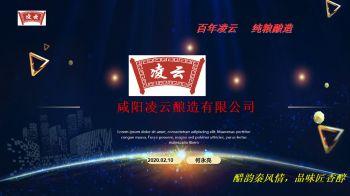 咸阳凌云酿造有限公司 介绍和产品介绍电子画册