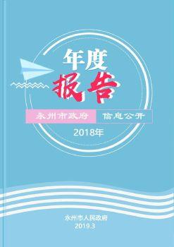 2018年永州市政府信息公开年度报告 电子杂志制作平台