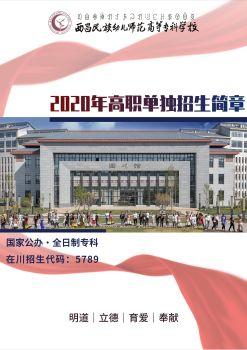西昌民族幼专2020年高职单招简章电子宣传册