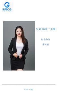 双湾一CG圈财务报表宣传画册