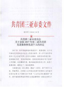团市字[2018]54号-共青团三亚市委员会关于2017年度三亚市共青团先进集体和先进个人的决定宣传画册