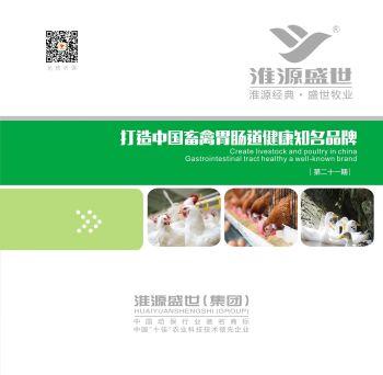 淮源盛世第21期画册 电子书制作软件