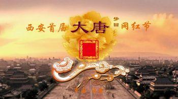 西安大唐629网红节官方版_20200309宣传画册