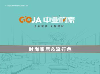 中亚构家家居流行色电子画册