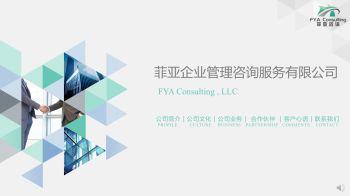 菲亚咨询简介FYA Consulting Profile-NEW电子刊物