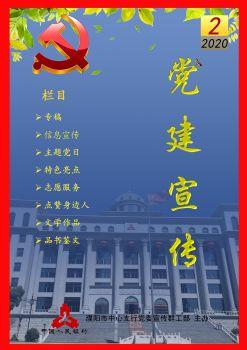 人行濮阳市中支《党建宣传》简报第2期电子杂志