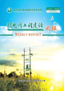 臨河供電分局配電網工程建設周報(2019年 第3期 6月14日-6月21日)內部資料 注意保密