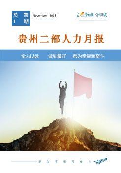 【贵州二部】区域营销管理部人力月报电子画册