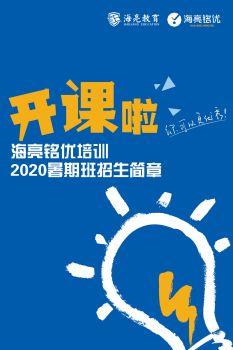 海亮铭优培训2020暑期班招生简章电子宣传册
