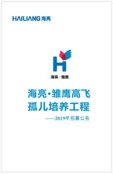 海亮·雏鹰高飞 孤儿培养工程 ——2019年招募启动电子书