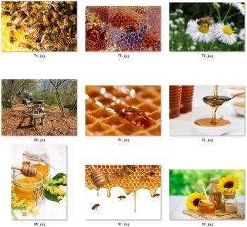 蜂蜜图片蜜蜂采蜜图片素材背景图养蜂场图片蜜蜂图片图库设计素材宣传画册图册彩页宣传册设计印刷图片素材(1)--要原图/大图请跟客服联系--客服QQ号:985849065 微信号/:2206016230  电话:13682674989--高清晰度画册图册设计印刷级图片素材)-无水印----已经全面更新了,展示在qq空间相册/主页(做画册图册彩页宣传册设计印刷专用高清图片)-欢迎大家下载或转存 下载网页链接地址1:https://shop108281333.taobao.com/search.htm?order