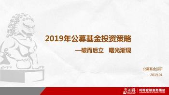 2019年公募基金投资策略-破而后立,曙光渐现电子杂志