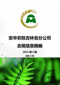 吉林省分公司合规信息摘编 2021 第五期总第13期电子画册 电子书制作软件