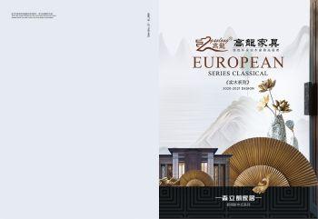 高龙现代新中式2020宣传画册