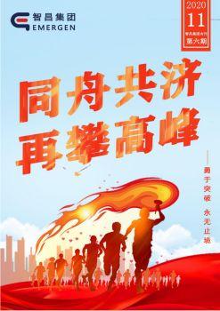 智昌集团2020年第六期月刊