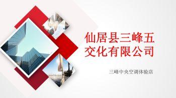 悦公馆1#1-139平方一拖六电子宣传册