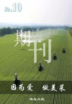 华北大区期刊第10期 电子书制作软件