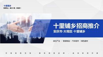 安庆市大观区十里铺乡招商推介电子画册