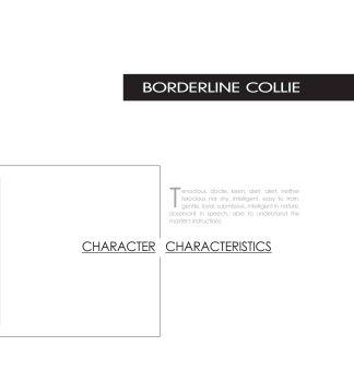 柯利,3D翻页电子画册阅读发布平台