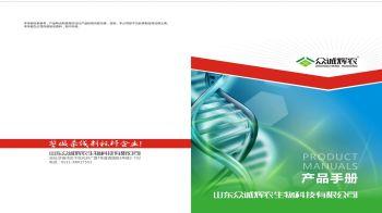 新建 PPTX 演示文稿-已转档 (1) 电子书制作平台