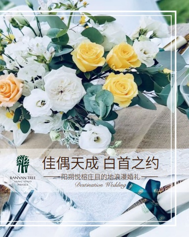 BANYANTREE YS 婚礼宣传册