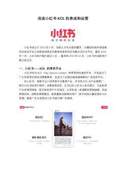 浅谈小红书KOL的养成和运营宣传画册