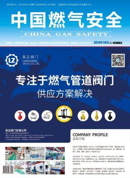 《中国燃气安全》2018.10 上册