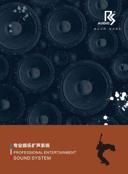 RS专业娱乐音响系统-2020电子画册