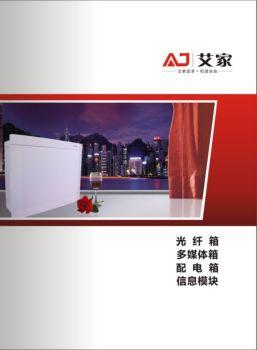 光纤箱-配电箱-信息箱-信息模块画册
