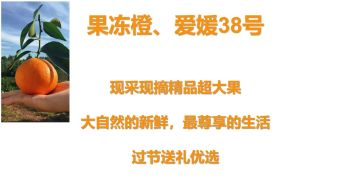 眉山特色-果冻橙、爱媛38号电子杂志
