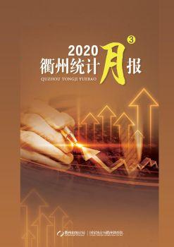 2020年3月衢州统计月报电子画册