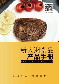 新大洲产品手册 电子书制作软件