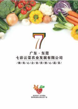 七彩云菜画册,电子书免费制作 免费阅读