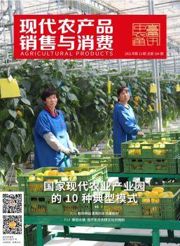 现代农产品销售与消费2021年第13期电子宣传册 电子书制作软件