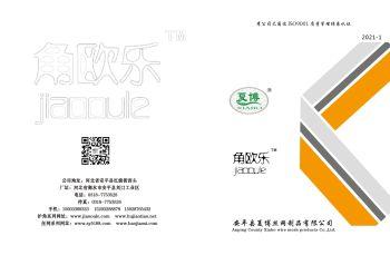 安平县夏博丝网制品有限公司产品目录电子杂志