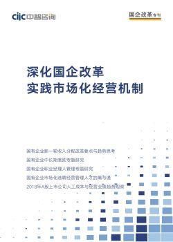 2019中智咨询《国企改革》专刊第一期——深化国企改革,实践市场化经营机制