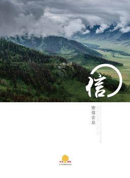 安信地板2018品牌云手册
